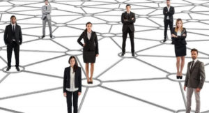 reinvencion profesional red profesional